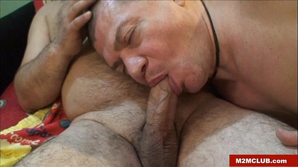 aroused father bear barebacking bear gay