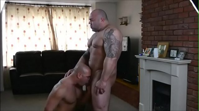 british muscle bears fuck too love to enjoy bear gay