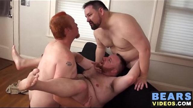 Bear Gay sexed buxom muscly bears pushing doggy bareback